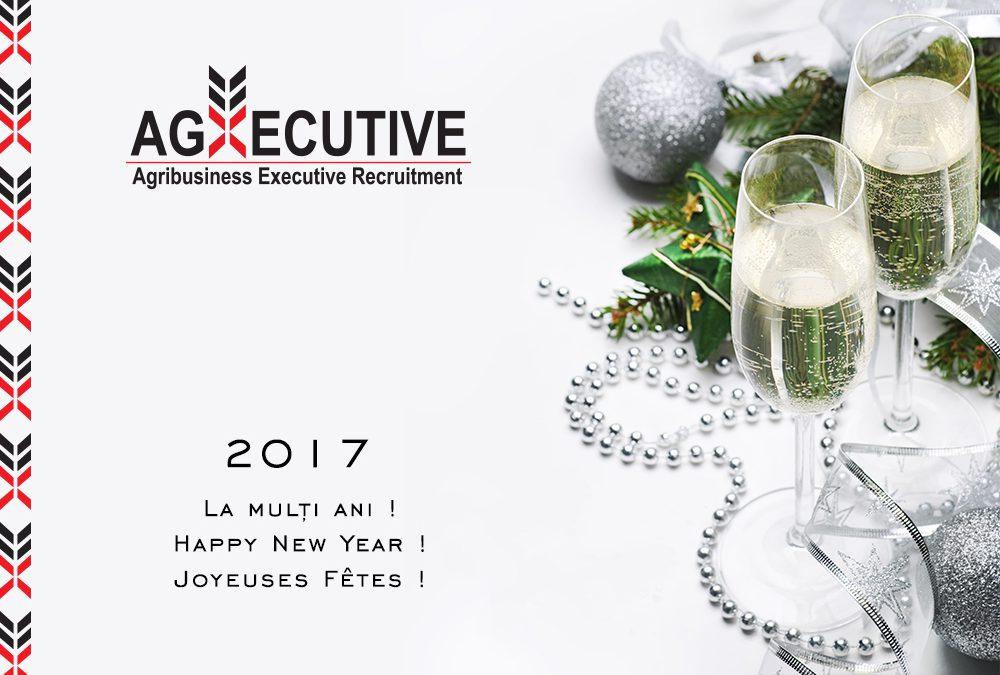 Happy New Year 2017! / Meilleurs voeux pour le Nouvel An 2017 !